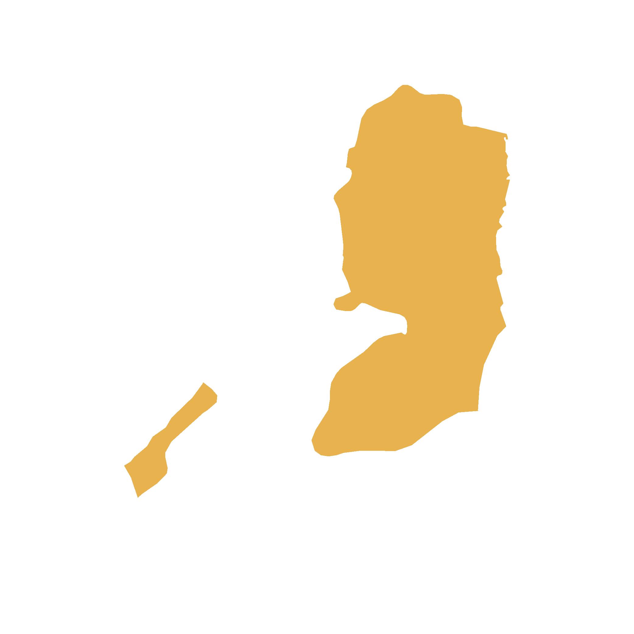 Palestinian State Map