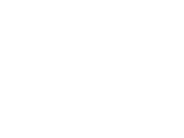 The Inter-Agency Task Team (IATT) for Prevention and Treatment of HIV Infection in Pregnant Women, Mother and Children