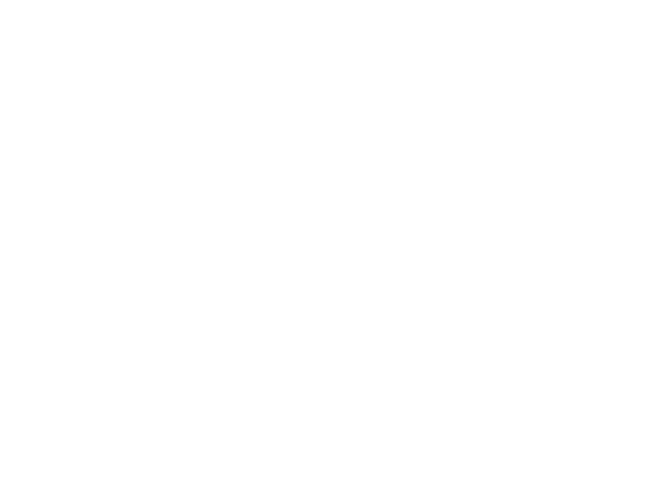 Global Social Service Workforce Alliance